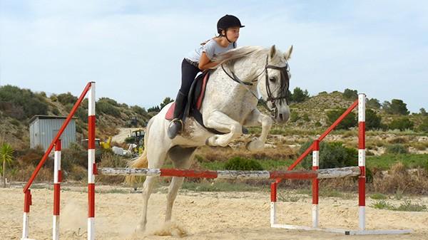 galeria-caballos1-bd55df113c
